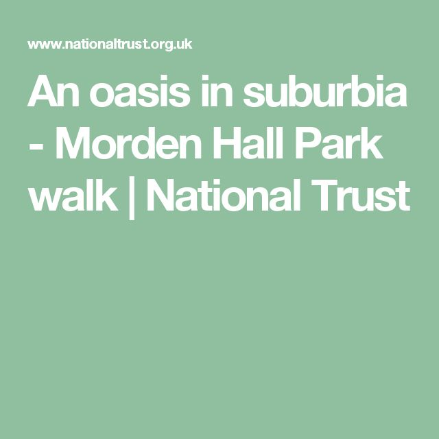 An oasis in suburbia - Morden Hall Park walk | National Trust