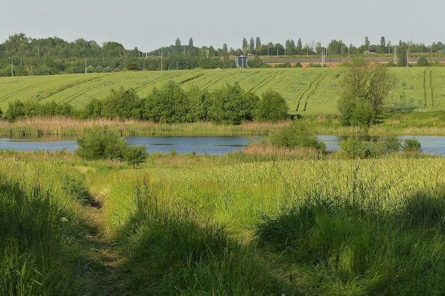 szlaki i bezdroża: Miechowice - po łąkach, bezdrożach i polami