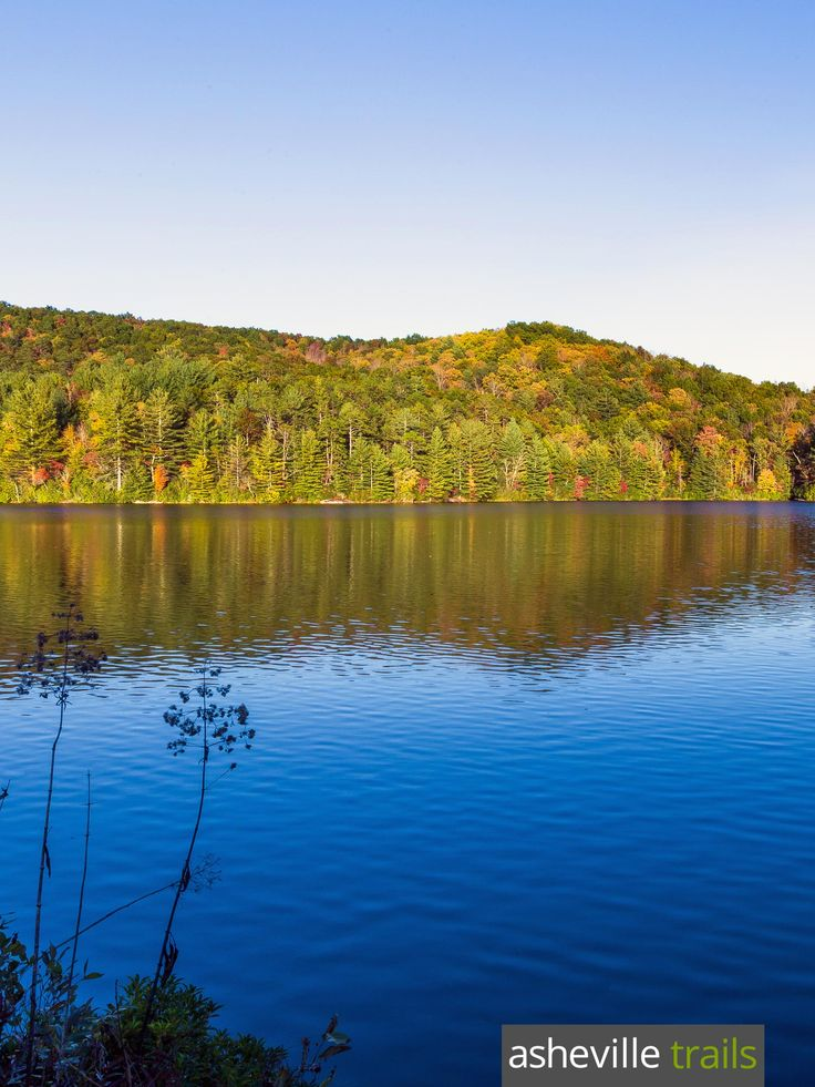 Hike to Bridal Veil Falls in NC's DuPont State Forest, passing the glassy waters of Lake Julia