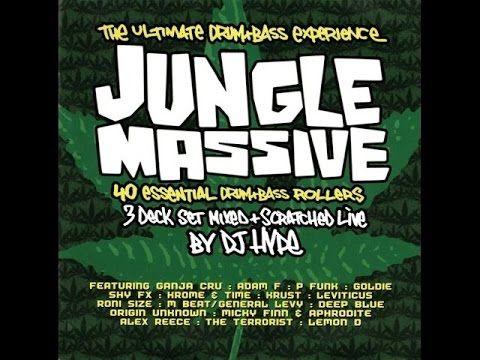 Dj Hype - Jungle Massive CD2