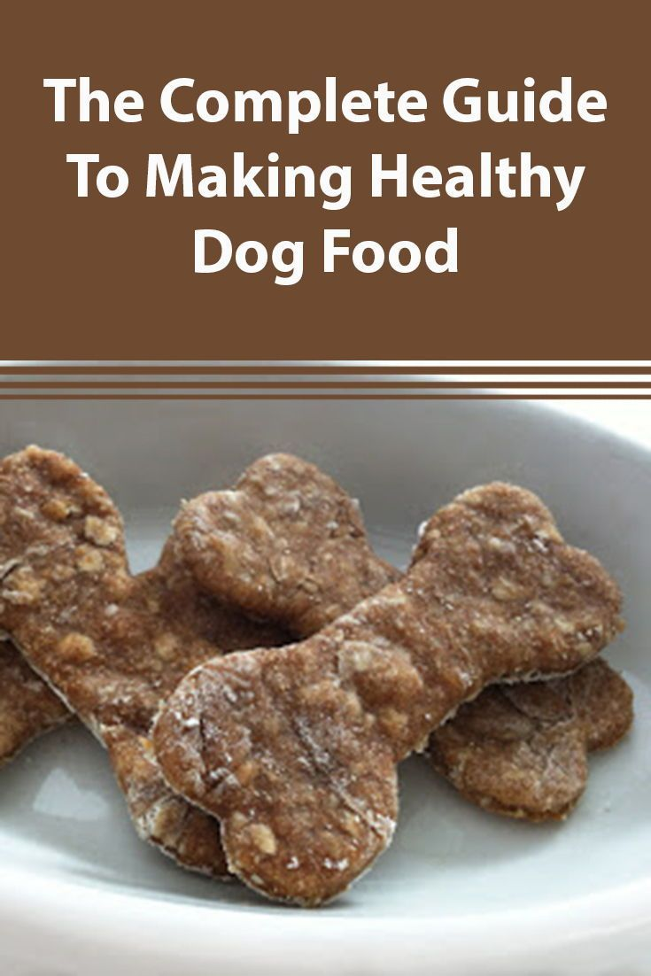 Homemade Dog Food Recipes Dog Biscuit Recipes Homemade Dog
