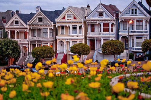 """my"" lovely 'painted ladies'~San Francisco"
