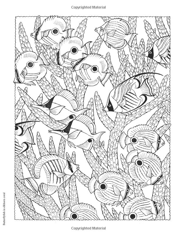 7375 best Color me images on Pinterest Adult coloring Coloring