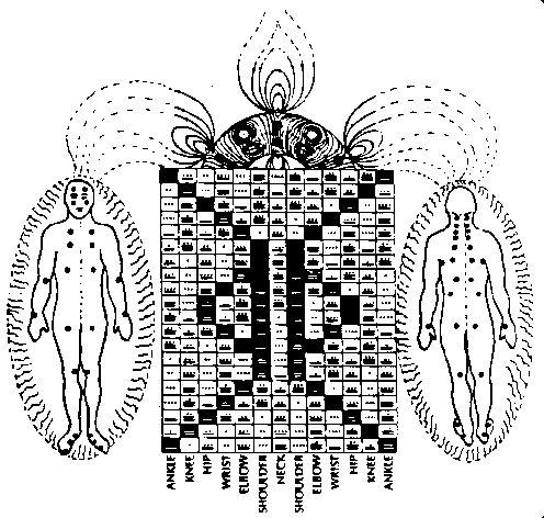 Tzolkin and the etheric body.  Image source: The Mayan Factor book by Jose Arguelles.