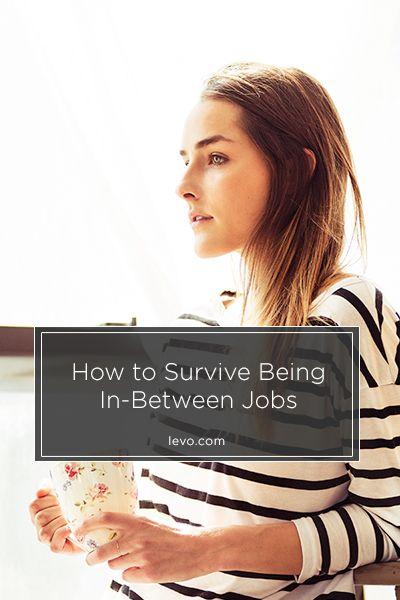How To Survive Being In Between Jobs. Career ChangeJob ...