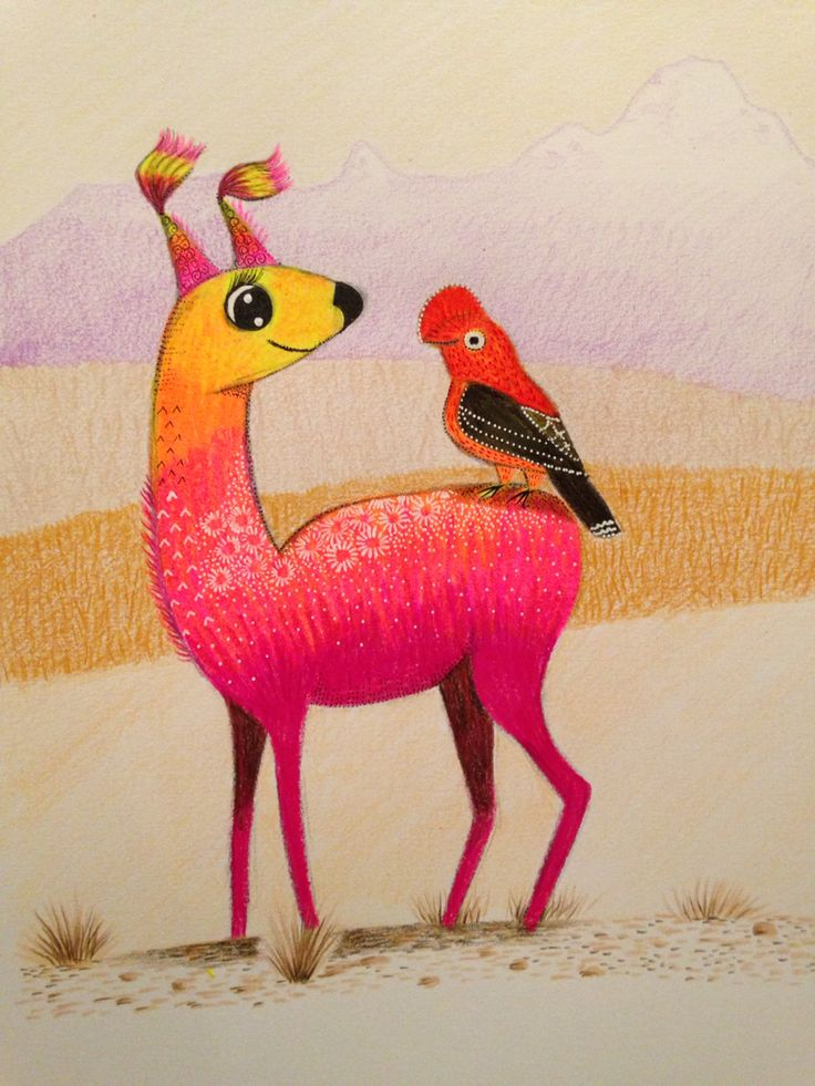 Character illustration. Vicuña & Tunki