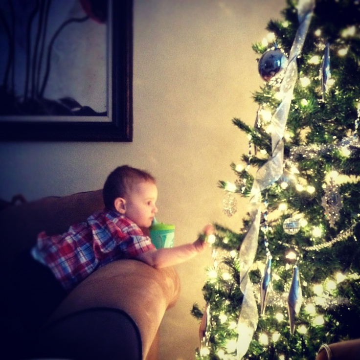 Christmas tree lights and my baby bou