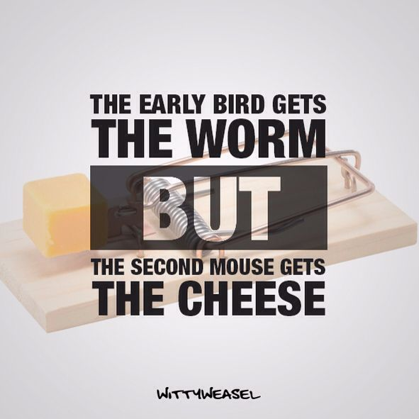 The early bird gets the worm BUT the second mouse gets the cheese