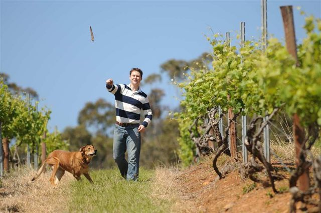 Our first Hunter Valley Winemaker. Andrew Leembruggen is going it alone with Angel funding.