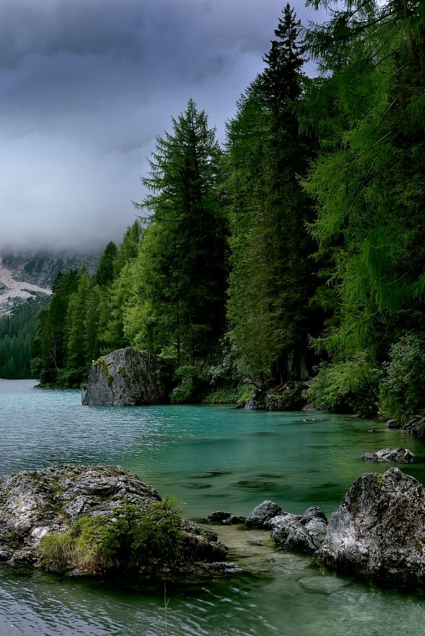 forest-nation:  a green lake in the Dolomites by Marcello Machelli