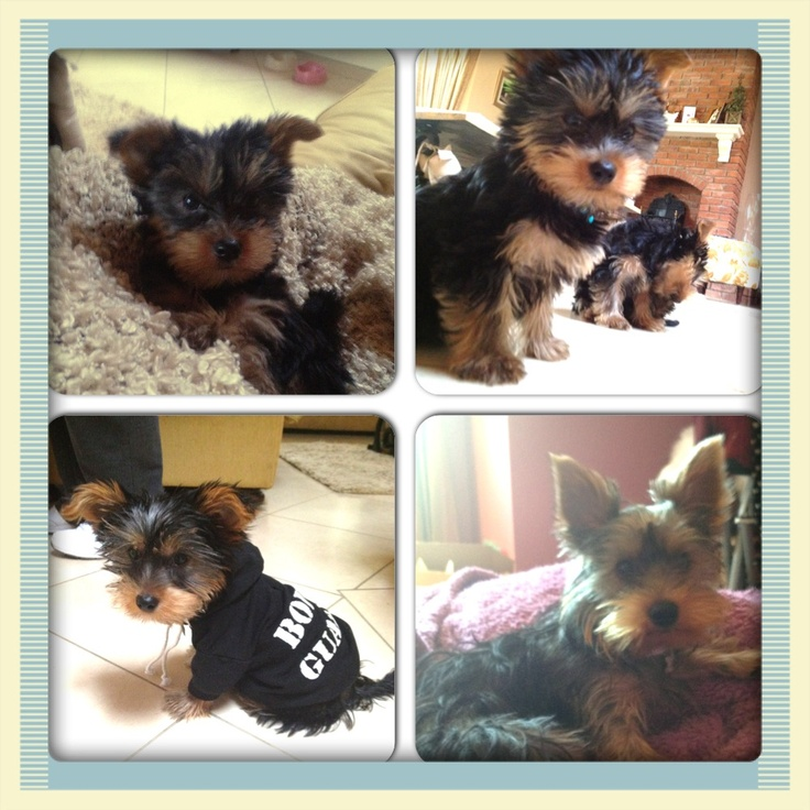 My little Ellie growing up <3