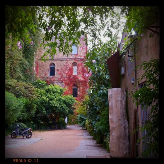 Palo Alto. Barcelona