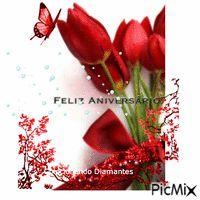 Feliz Aniversário  28  11  16