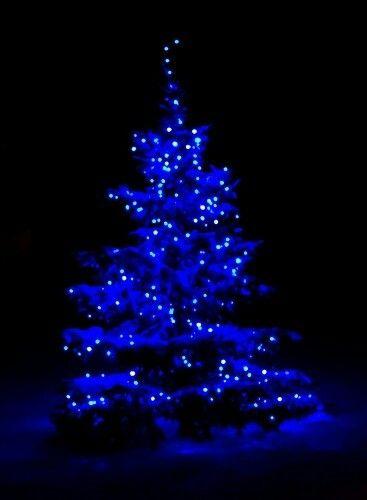 blue christmas bbn blue christmas lightswhite christmas treeschristmas - Blue Christmas Tree Lights