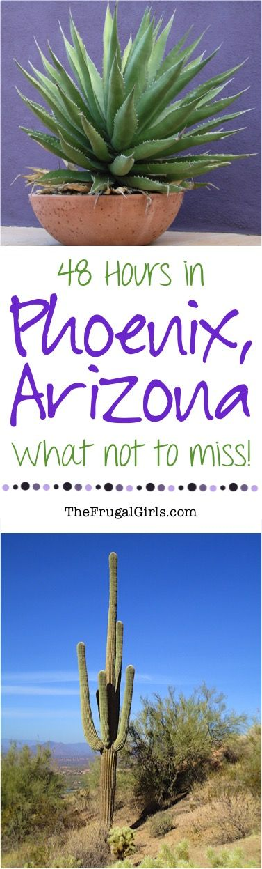 Phoenix Arizona Travel Tips - Things to Do!  HUGE list of fun insider travel tips, bucket lists, and hidden gems for your next vacation to AZ! | TheFrugalGirls.com