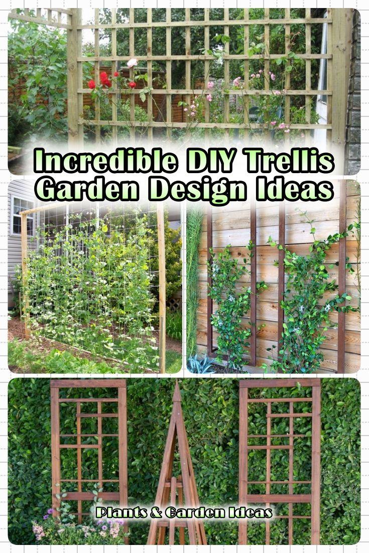 15 Incredible Diy Trellis Garden Design Ideas For Your Garden