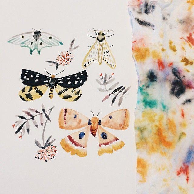 Butterfly via katievernonart