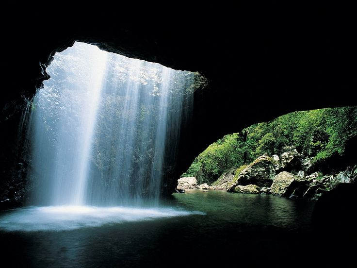 Natural Bridge is in the western part of Springbrook National Park, part of the Gondwana Rainforests of Australia World Heritage Area.