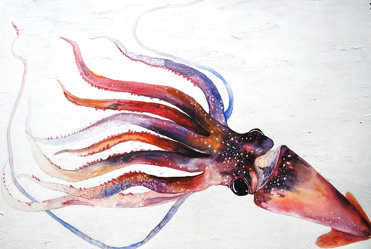 A Squid  Original Oil and Watercolor Painting by WoodPigeon