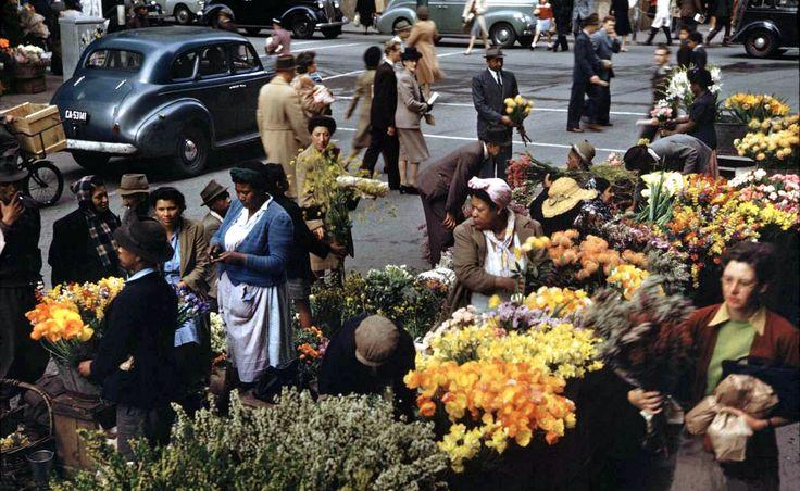 Flower Sellers, Parliament Street, 1946