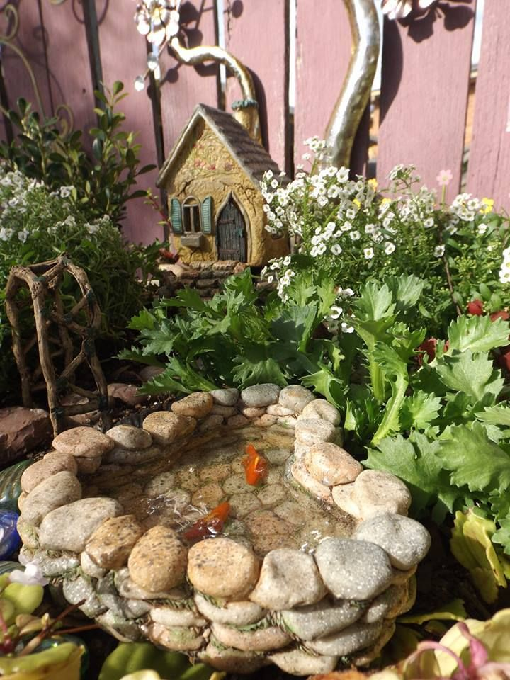 We love to see your photos and share your stories! Tanya recently shared her photos and story with us.  What inspired you to create your fairy garden?  When I was a small child I visited Fantasy Glades in Port Macquarie. Fantasy Glades was a fairy tale theme park, and