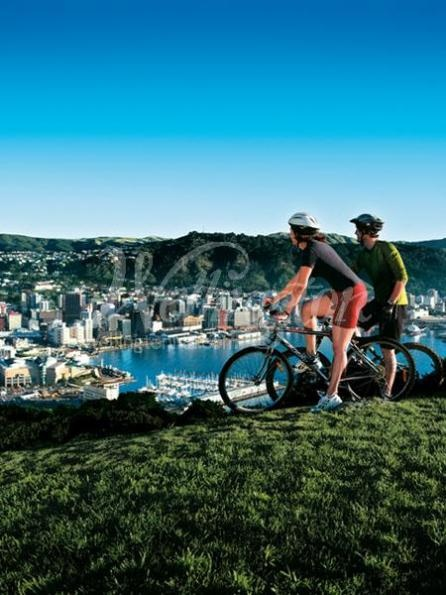 Mountain biking up Mount Victoria in Wellington, New Zealand to check out the view.