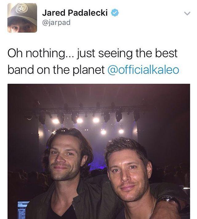 Jared on twitter