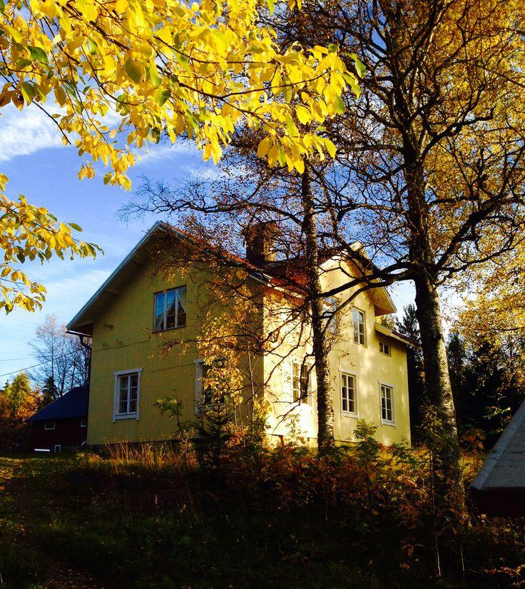 Mitt hem Frönäset - höst 2015 Ängersjö