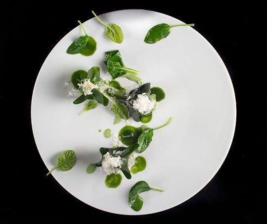 WORLD TOP - Enrico Crippa: le parole dell'orto, Reporter Gourmet