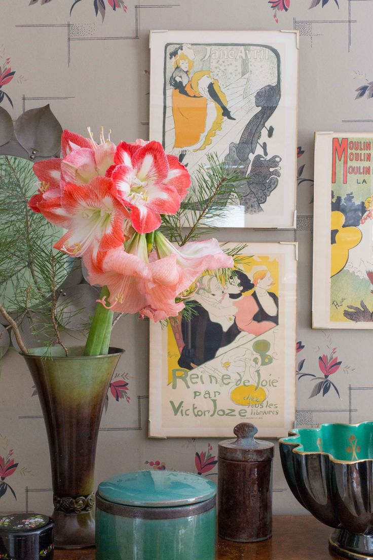 Amaryllis och en tallkvist i vas. På väggen hänger illustrationer av Henri de Toulouse-Lautrec. Foto: Erika Åberg