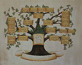 Family Tree Murals For Walls 36 best for the living roomfamily tree images on pinterest