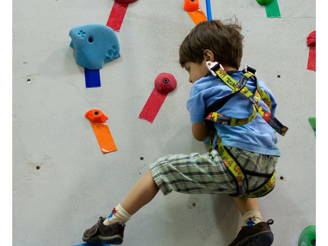 Scale New Heights with Rock Climbing ForKids - Santa Clarita
