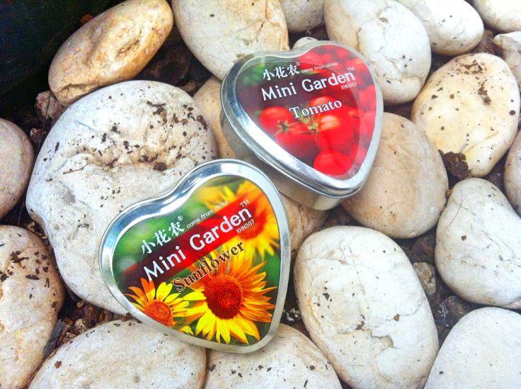 Cute little Mini Garden <3