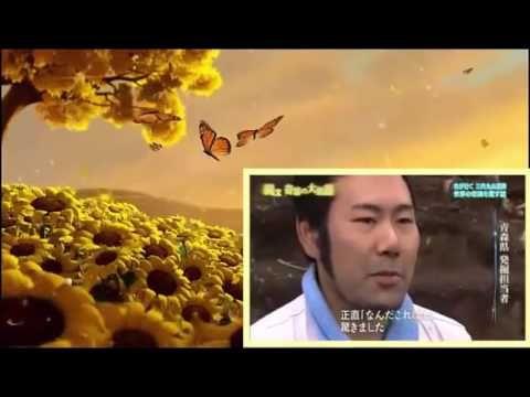 NHKスペシャル <アジア巨大遺跡> 第4集 「縄文 奇跡の大集落 ~1万年 持続の秘密~」 南米・アマゾン川をずっとずっと遡ったその先に「規格外」の人間たちが生きていた……。 N - YouTube