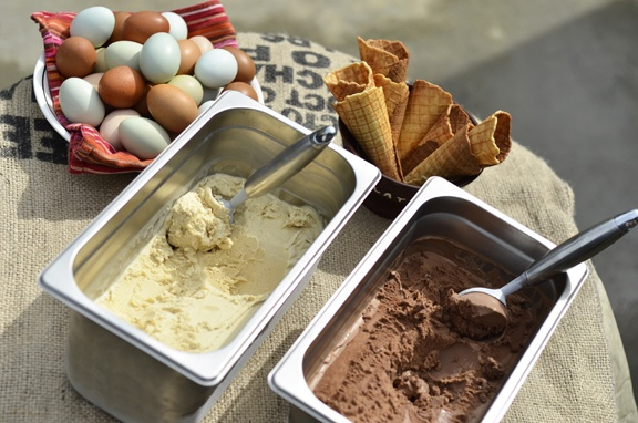 The best (yes we do mean BEST!) chocolate and vanilla ice creams, along with our organic heritage chicken eggs & our house made waffle cones!