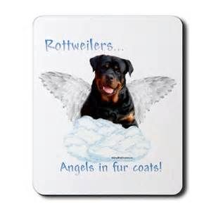 Image detail for -Cute Rottweiler pups : Happy Rottweiler