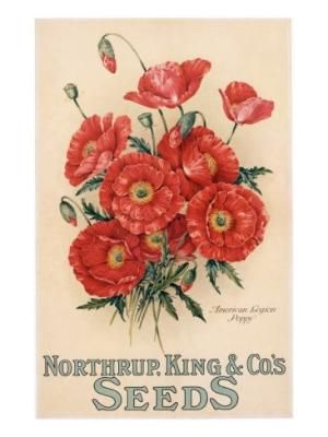 seed packets vintage poppies - Google Search