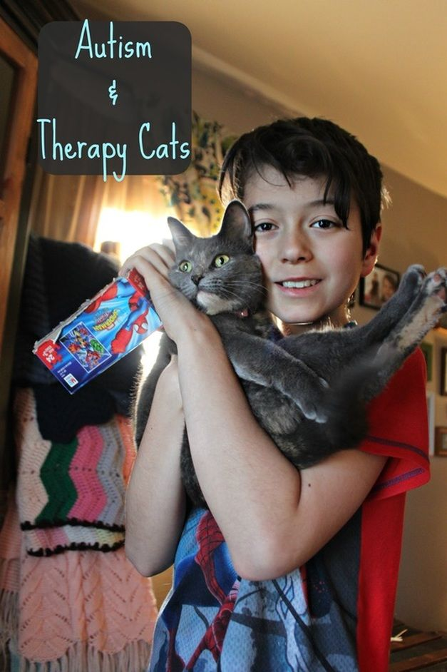 Who knew that a cat could become a therapist (of sorts) for my son with autism!