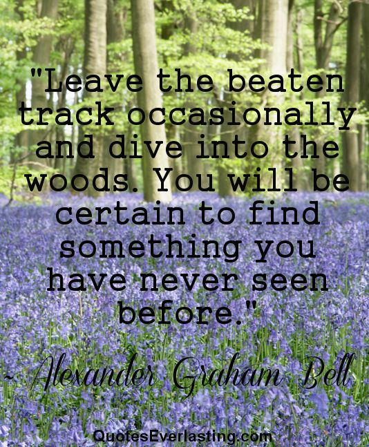 Woods Quotes: 25+ Best Alexander Graham Bell Quotes On Pinterest