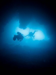 Best Cave Diving Ideas On Pinterest Mediterranean Grouper - An alien world lurks beneath in this creepy cave diving video