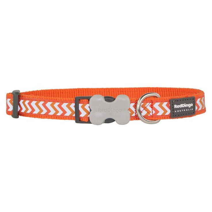Red+Dingo+Reflective+Ziggy+Orange+Medium+Dog+Collar