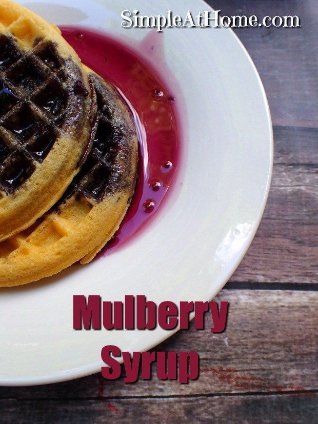 Got mulberries in your neighborhood? This mulberry syrup recipe is a great way to put them to use | summer | foraging | fruit | breakfast | recipe