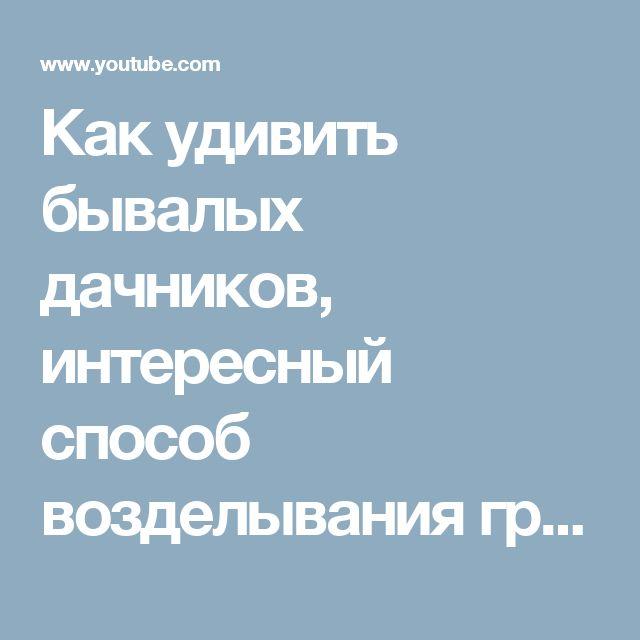 Как удивить бывалых дачников, интересный способ возделывания грядок - YouTube