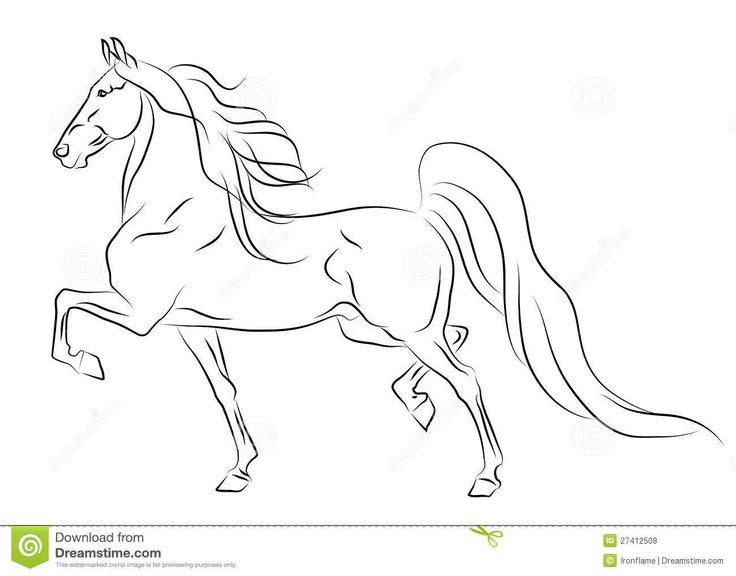 Running American Saddlebred Horse Sketch - Download From Over 39 Million High Quality Stock Photos, Images, Vectors. Sign up for FREE today. Image: 27412508