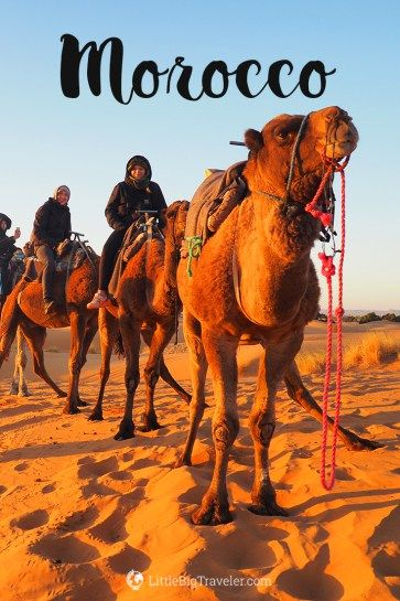 Best thing to do while in Morocco is visiting the Sahara desert. Book a shared trip from Marrakech to Merzouga and meet other travelers. Organize your Sahara trip #Morocco #Sahara #Merzouga #travel #travelblogger