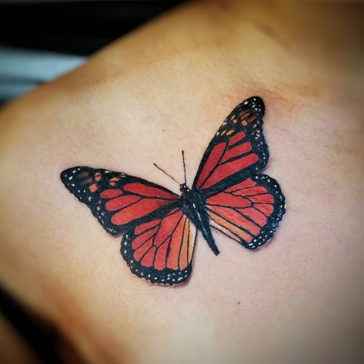 realistic butterfly tattoo designs