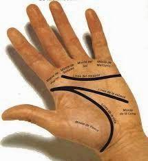 Lectura de las lineas de las manos ¿ Como leer las lineas de las manos ? ¿Te gustaría leer la mano ? Nosotros te lo pone...