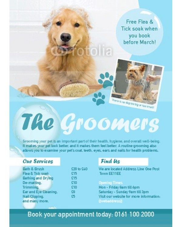 84 best dog groomers images on pinterest doggies animales and dog dog groomers a6 leaflets solutioingenieria Image collections