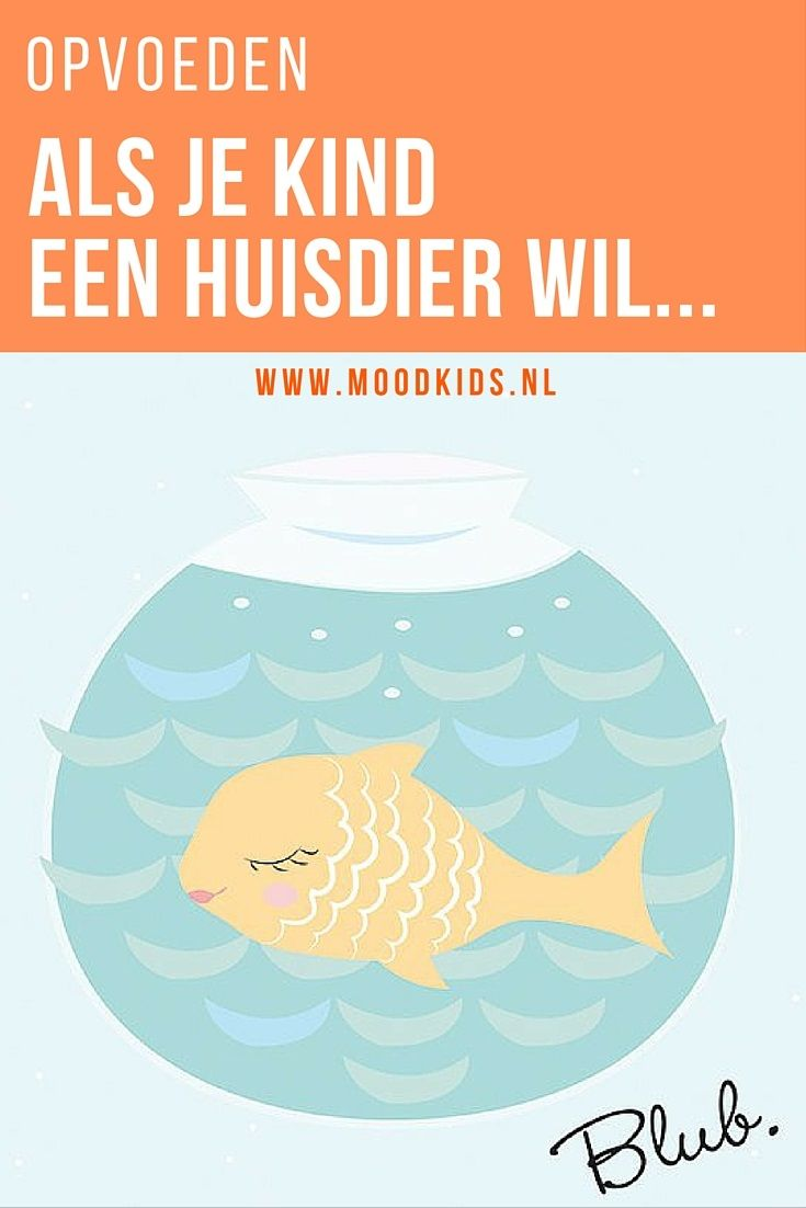 Als je kind een huisdier wil, wat doe jij als ouder dan? Manja schreef een geweldige blog hierover op www.moodkids.nl