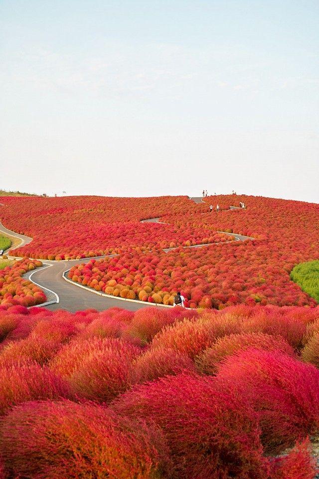 5 Colorful Travel Destinations That You Should Visit